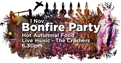 bonfire party 400